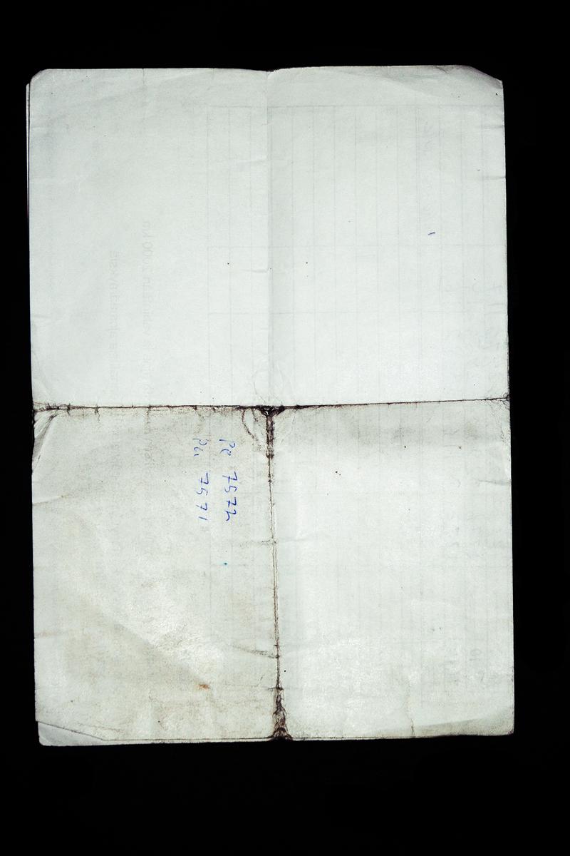 1888x1259 texture - MPtex11 by yunyunsarang
