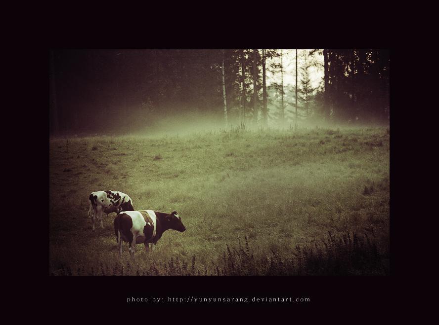 Farmville by yunyunsarang