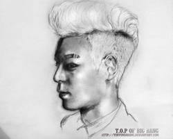 Smudgy T.O.P
