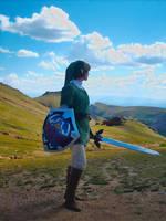 Hyrule Highlands by Wilkowen