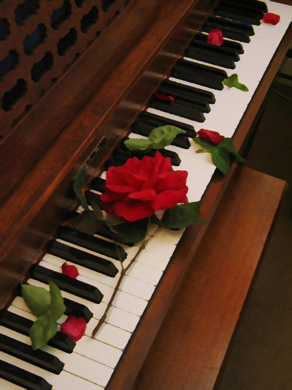 Rose And Piano Series No 5 By Goshinkipickle On Deviantart