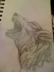 Howl by wolfiscrazed