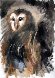 Expressionist-Wannabe Barn Owl by CyanilurusJubatus