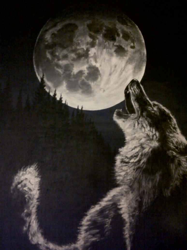 Black Wolf Howling Drawing Image