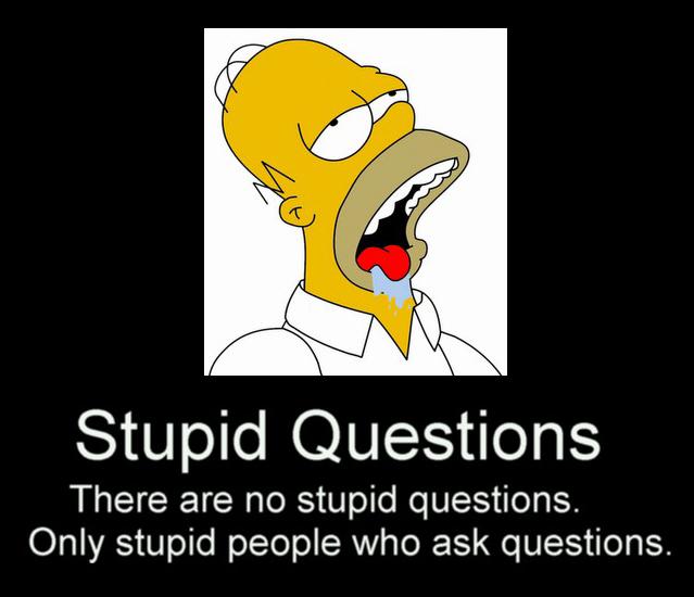 Funny Senseless Survey Questions