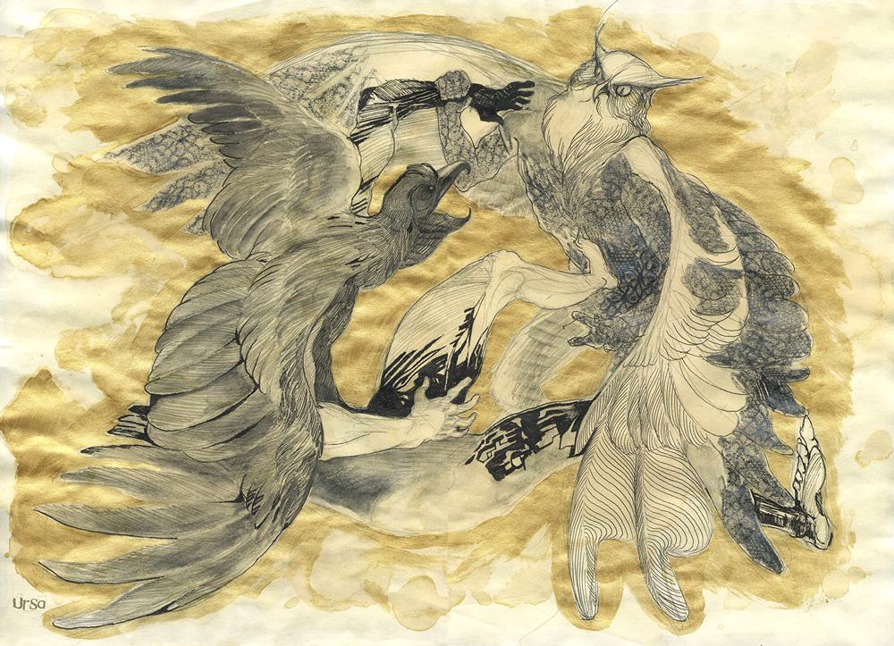 Bird fight by Obman-Veschestv