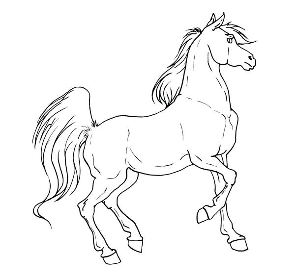 Horse Lineart : Perla neagra pagina howrse