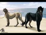 Korung - Horus and Mcelroy