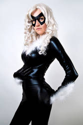 Black Cat by diacita