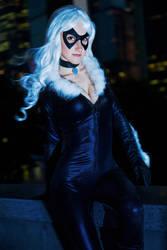 Felicia Hardy - Black Cat by diacita