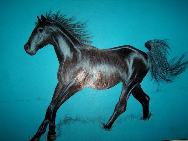 horse... Missouri Fox Trott by Drrrakonis