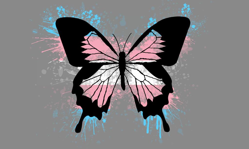 Transgender Butterfly Pride Wallpaper by AmyBluee42