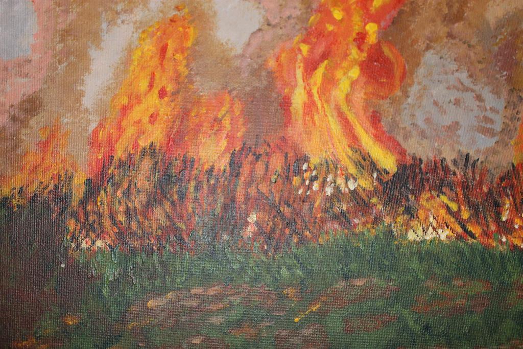 The eternal burning bushland by DuchessRush