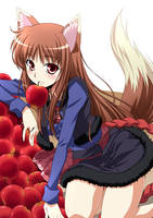 Horo's Happy Harvest by WolfandSpice