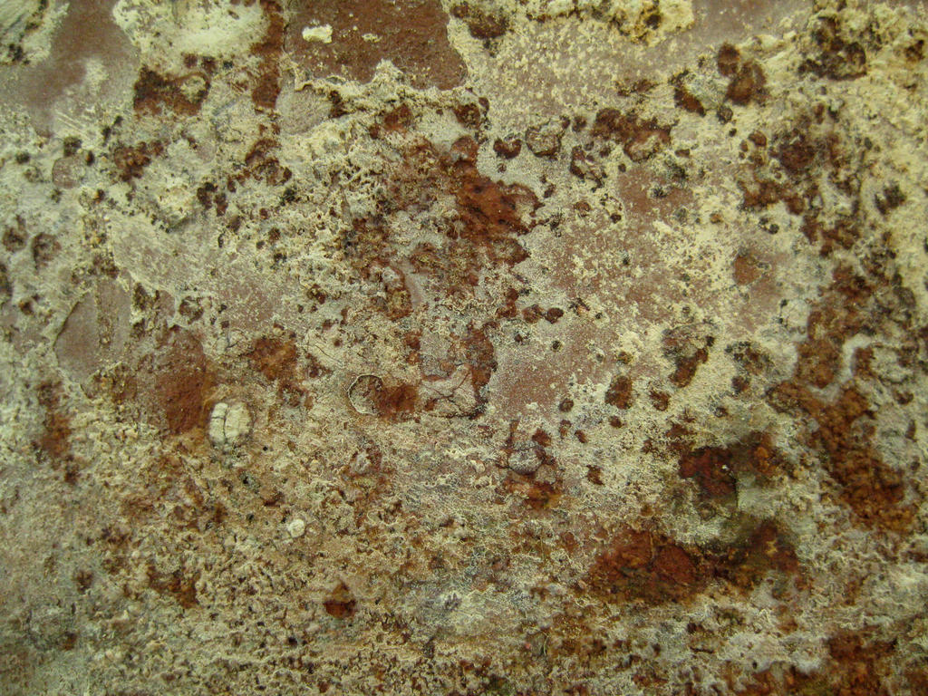 Surface by TextureCat