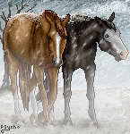 Equine-Pixel Tag Contest Entry by 8Siren