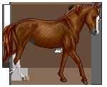 Arabian by 8Siren
