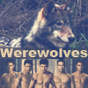Werewolves of Twilight saga by BarbieBlack