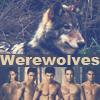 Werewolves of Twilight saga by BarbieBlack