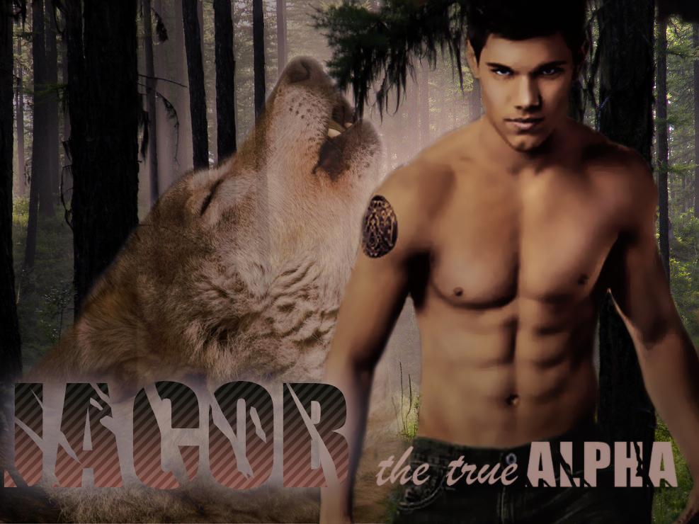 Jacob Black Werewolf Jacob Black The Real Alpha by