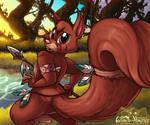 Juniper Squirrel