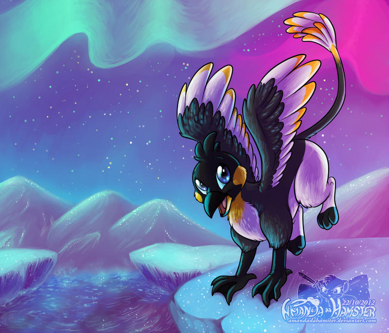 Penguin Griffon by AmandaDaHamster