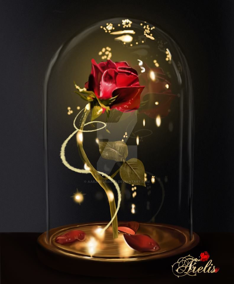 Beauty and The Beast Rose by AARARTDESIGNS