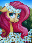 Fluttershy on the canvas