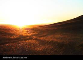 Sunrise on Field 1 by Esveeka-Stock