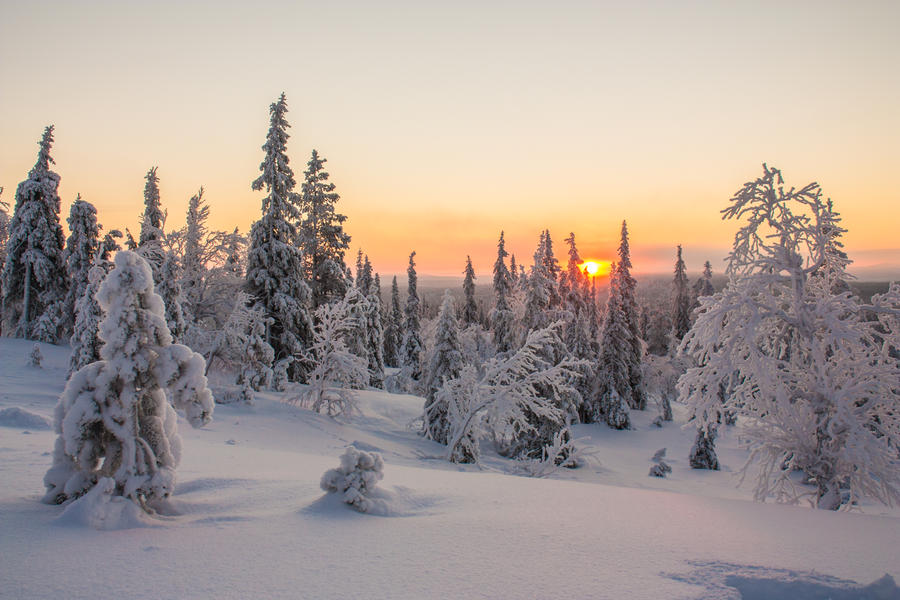 Lapland sunset by Esveeka-Stock