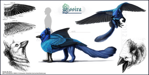 Issira - Reference Sheet