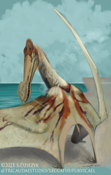 Tropeognathus mesembrinus - Beasts of Bermuda