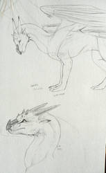 Salaiek sketches by LeccathuFurvicael
