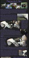 Pegasus Tutorial by Majikdragon
