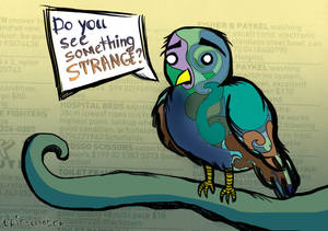 Do you see something strange?