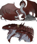 Timeless: Dragon Twins - Dragon Forms