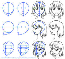 Letraset Manga Tutorials - basic face views