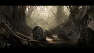 The Wood Spider's Den