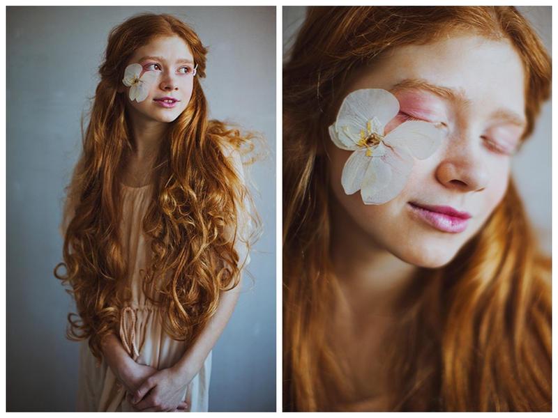 Sweet orchid by Lileinaya