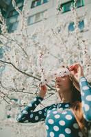 peach blossom by Lileinaya