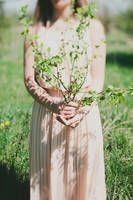 Little tree by Lileinaya