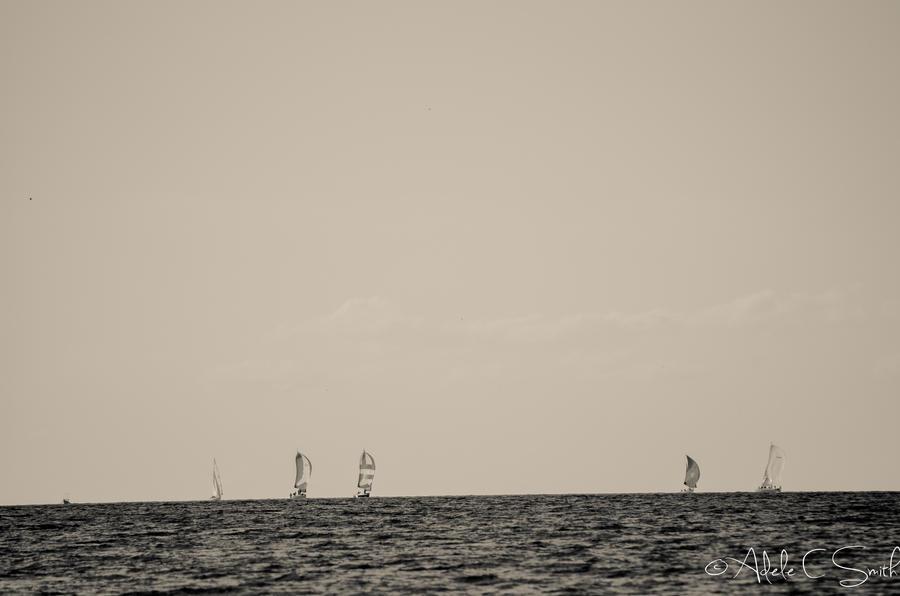 Sail by Riencuran