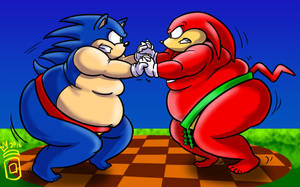 COMM: Sonic and Knuckles Sumo Match by RoyalJellySandwich