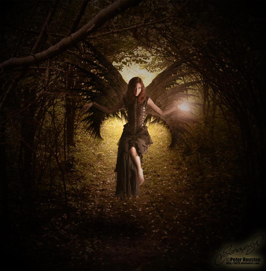 Gothic Fairy By DD28