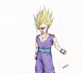 Gohan by JFR3