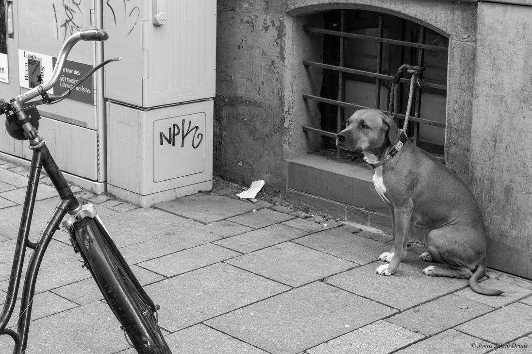 Waiting for someone by JonasDrude