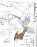 Feathers Tutorial 2: Flying