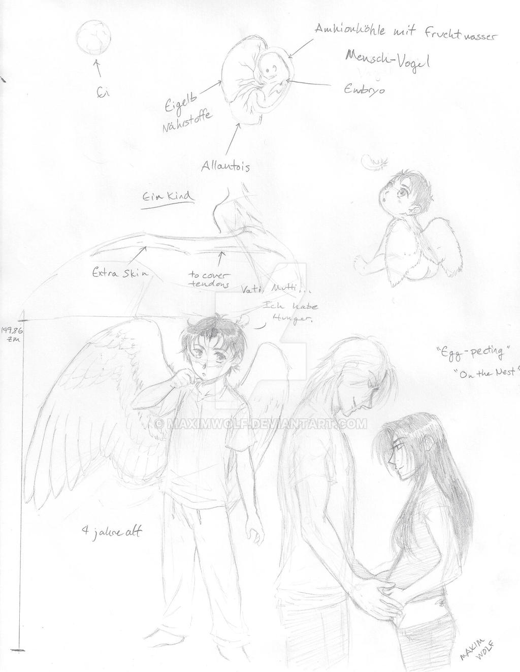 Human-Avian Anatomy: Egg-Chick-Child by MaximWolf on DeviantArt