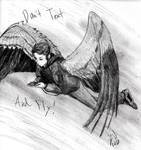 Don't Text and Fly! by MaximWolf