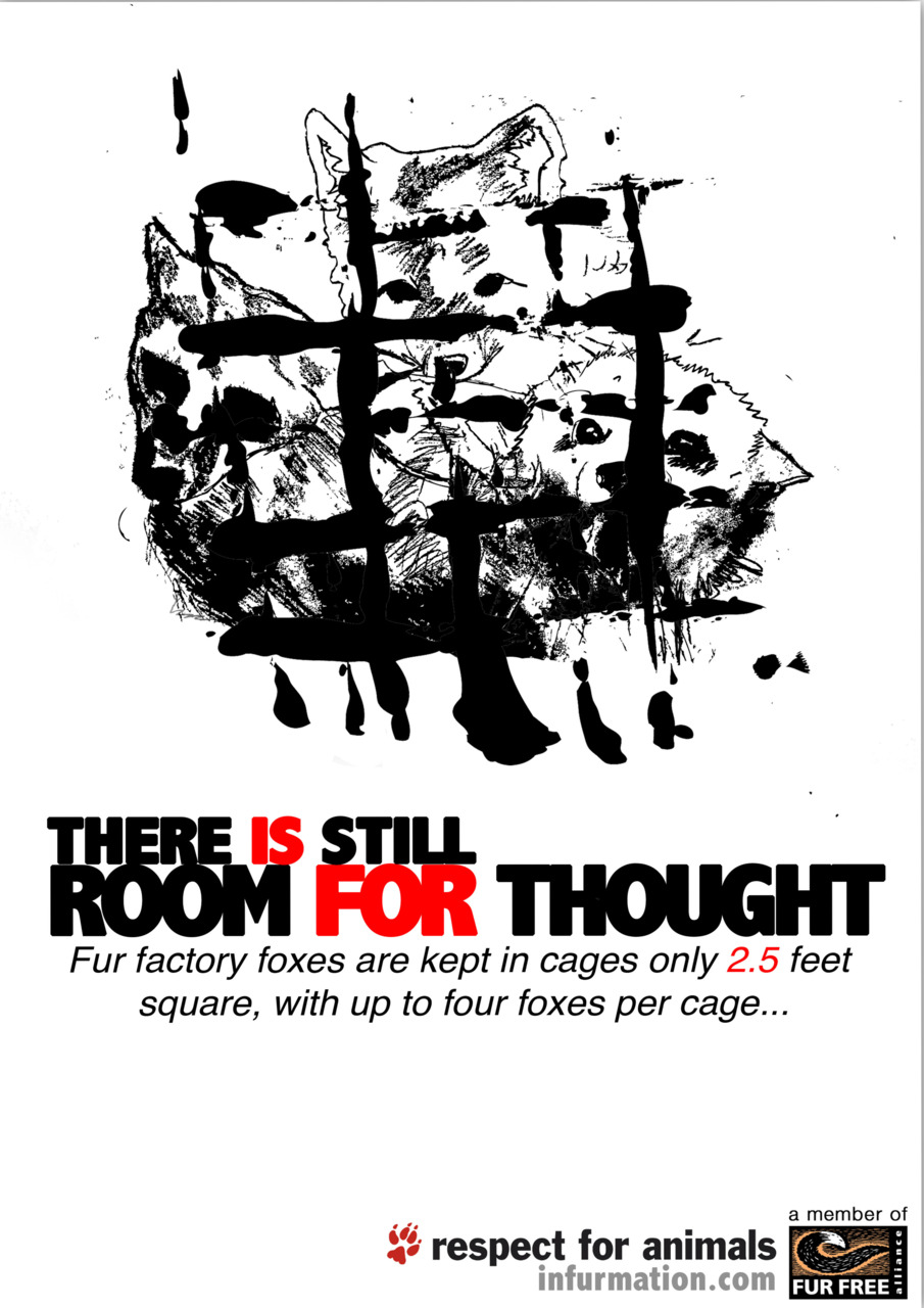 animal abuse posters ideas - photo #17